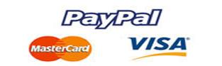 paypalformasdepago
